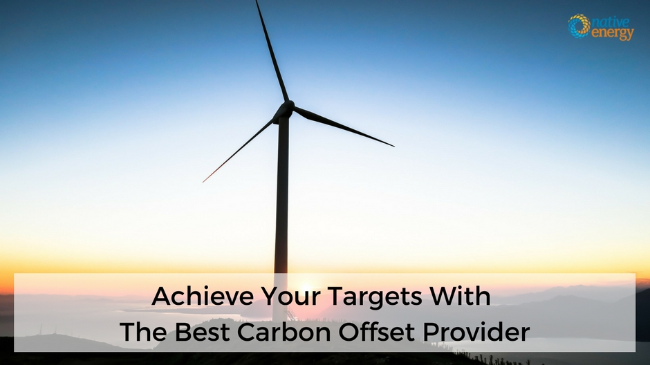 Achieve Your Targets With The Best Carbon Offset Provider