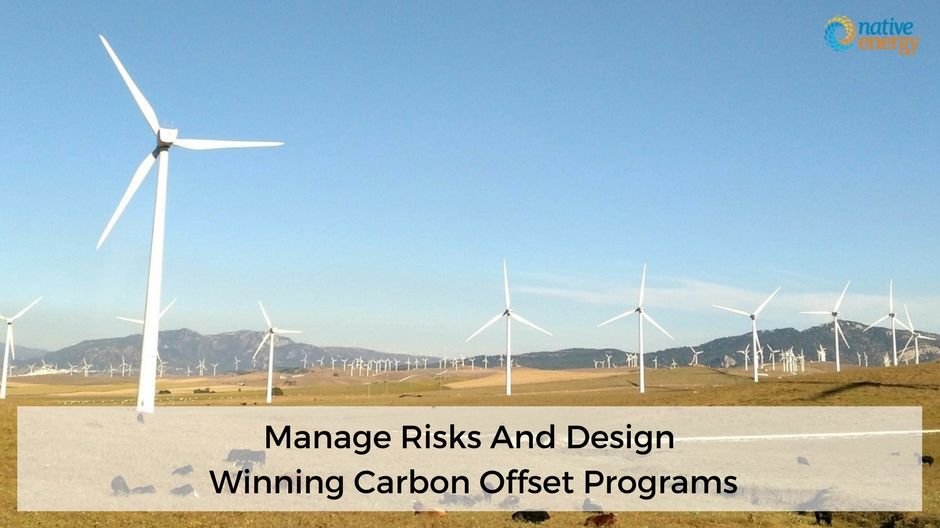 Manage Risks And Design Winning Carbon Offset Programs