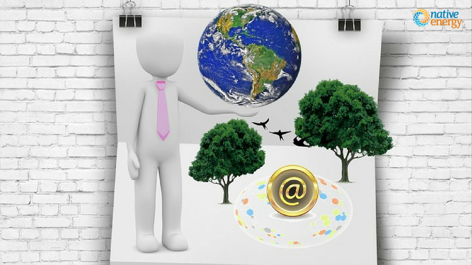 A Complete Guide To Choosing The Right Carbon Offset Providers