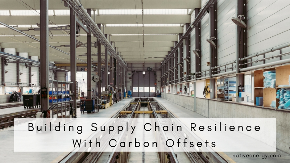 Building Supply Chain Resilience With Carbon Offsets