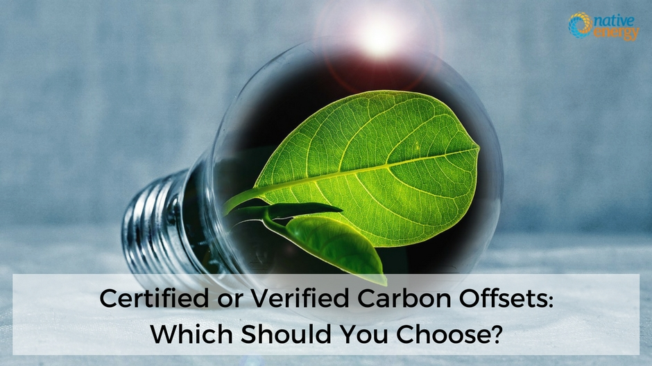 Certified or Verified Carbon Offsets_ Which Should You Choose