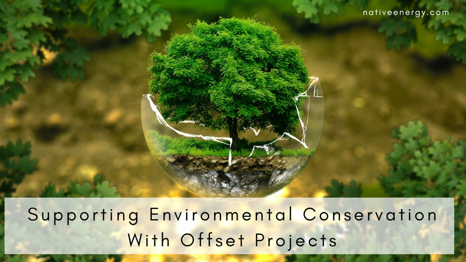 Supporting Environmental Conservation With Offset Projects