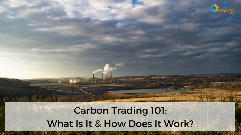 Carbon Trading 101_What Is It & How Does It Work