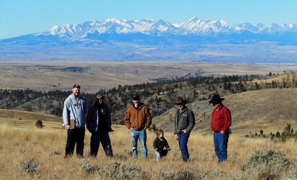 Photo Credit: Montana Natural Lamb