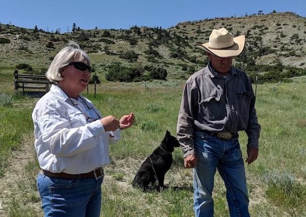 Indreland Ranch Regen Ag for Greenbiz 210819
